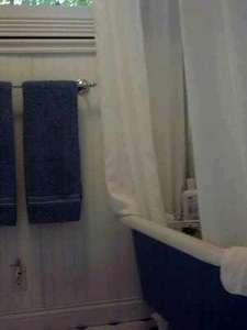 bathroom-clawfoot tub