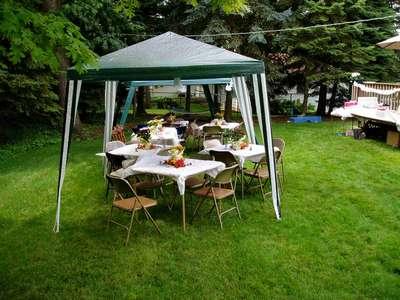 the backyard set-up