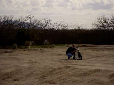 The future site of our new home! This is our very expensive plot of dirt.