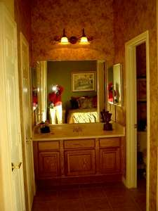 This is a picture of the guest suite bathroom. To the right is the bathroom part (toilet and shower). What you can see is the counter area.