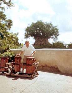 Dan playing the drums in Animal Kingdom...the tree of life is in the background