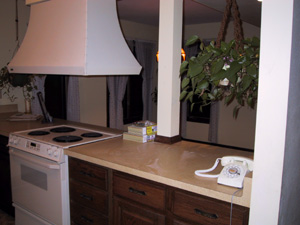 Kitchen (when we bought house)
