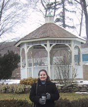 Looking at gazebos - this is the one we chose!